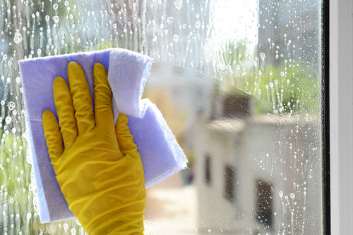 How To Give Your Windows A Professional Cleaning Treatment